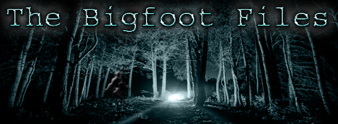 bigfootfiles