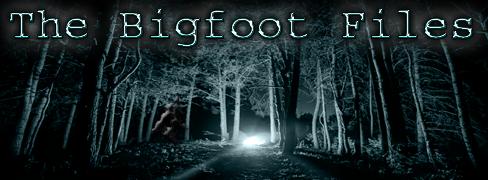 bigfootfiles